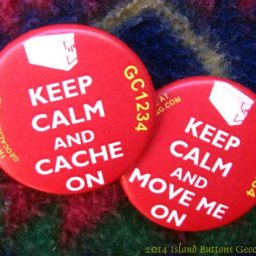 Buttons (Pin Back)